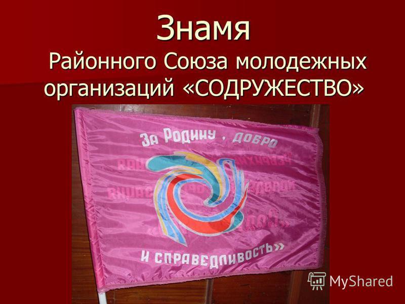 Знамя Районного Союза молодежных организаций «СОДРУЖЕСТВО»
