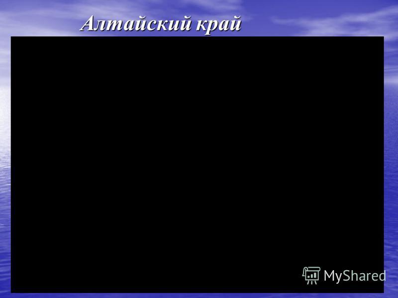 Алтайский край Алтайский край