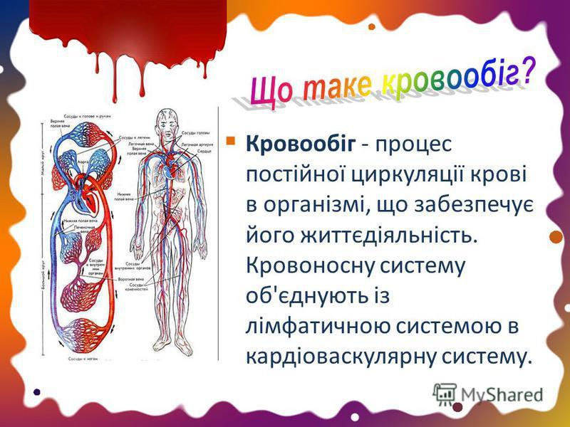Кровообіг - процес постійної циркуляції крові в організмі, що забезпечує його життєдіяльність. Кровоносну систему об'єднують із лімфатичною системою в кардіоваскулярну систему.