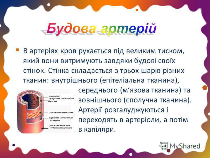 В артеріях кров рухається під великим тиском, який вони витримують завдяки будові своїх стінок. Стінка складається з трьох шарів різних тканин: внутрішнього (епітеліальна тканина), середнього (мязова тканина) та зовнішнього (сполучна тканина). Артері
