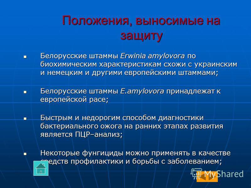 Положения, выносимые на защиту Белорусские штаммы Erwinia amylovora по биохимическим характеристикам схожи с украинским и немецким и другими европейскими штаммами; Белорусские штаммы Erwinia amylovora по биохимическим характеристикам схожи с украинск
