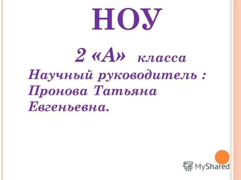 НОУ 2 «А» класса Научный руководитель : Пронова Татьяна Евгеньевна.