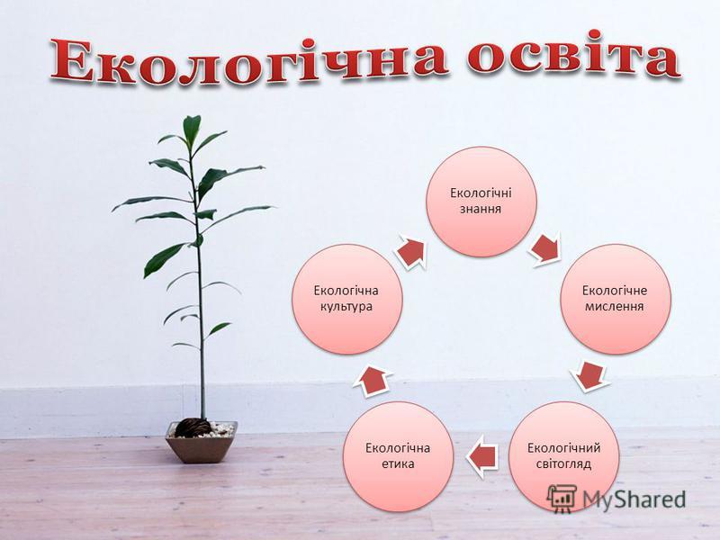 Екологічні знання Екологічне мислення Екологічний світогляд Екологічна етика Екологічна культура