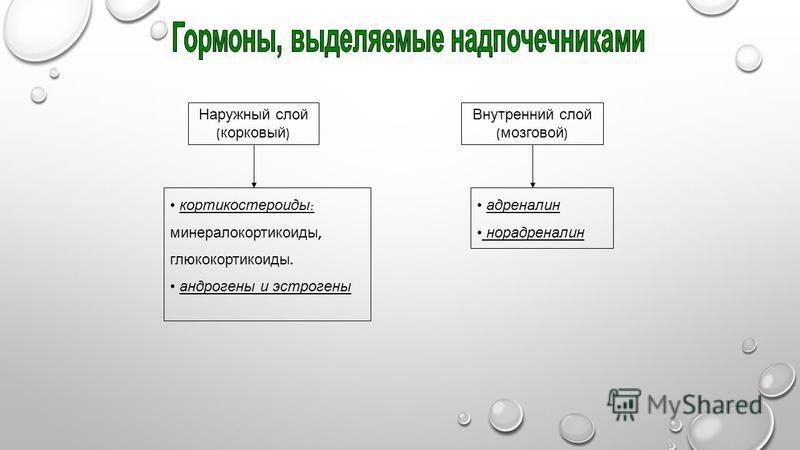 Наружный слой ( корковый ) Внутренний слой ( мозговой ) кортикостероиды : минералокортикоиды, глюкокортикоиды. андрогены и эстрогены адреналин норадреналин