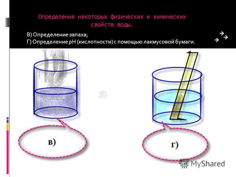 Определение некоторых физических и химических свойств воды. В) Определение запаха; Г) Определение pH (кислотности) с помощью лакмусовой бумаги.