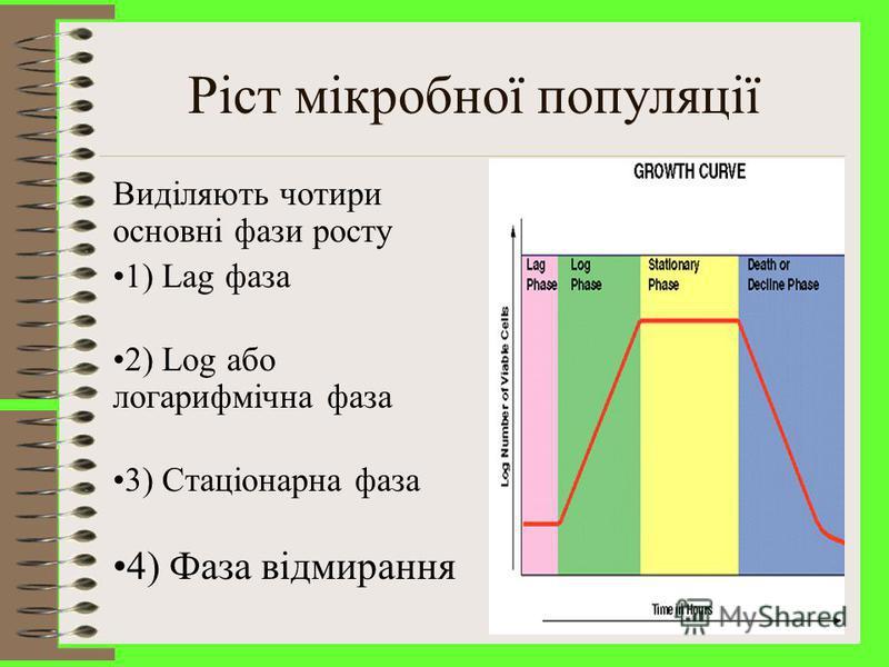 Крива, яка описує залежність логарифму числа живих клітин від часу культивування, називається кривою росту Розрізняють чотири основні фази росту періодичної культури: початкову (або лаг-) фазу, експоненціальну (або логарифмічну) фазу, стаціонарну та