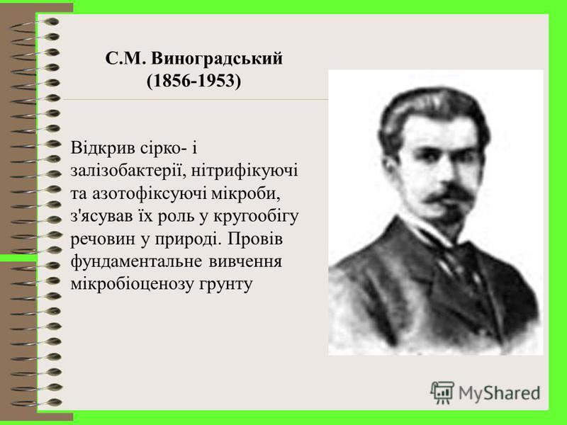 Д.Й. Івановський (1864-1920) У 1892 р. відкрив першого представника царства – вірусів - вірус мозаїчної хвороби тютюну