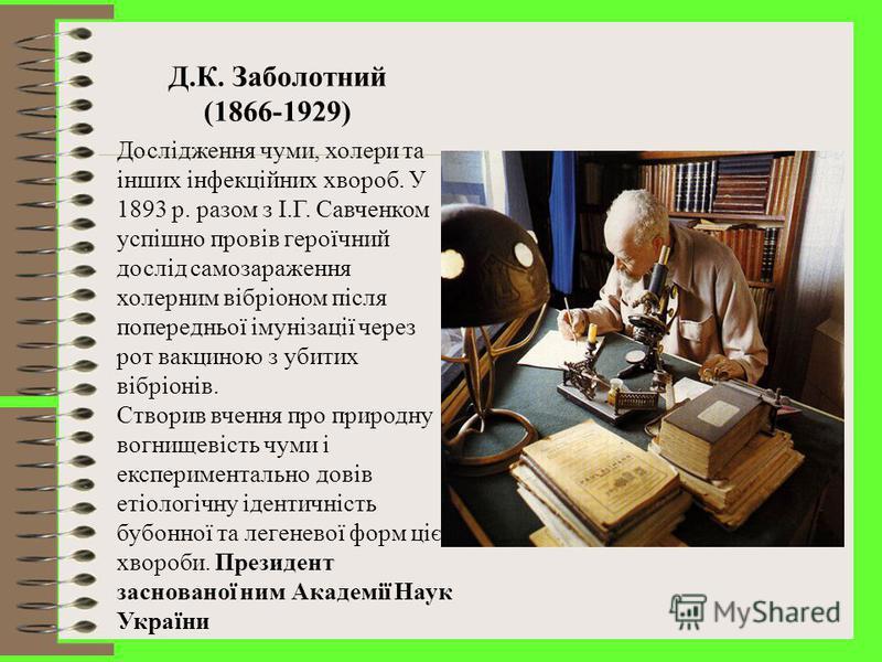 С.М. Виноградський (1856-1953) Відкрив сірко- і залізобактерії, нітрифікуючі та азотофіксуючі мікроби, з'ясував їх роль у кругообігу речовин у природі. Провів фундаментальне вивчення мікробіоценозу грунту