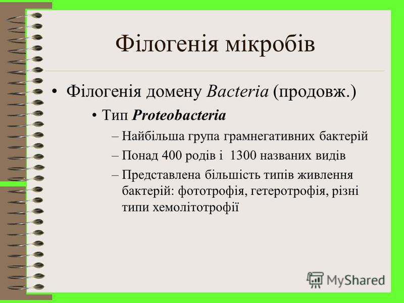 Мікробна філогенія Філогенія домену Bacteria –Поділяється на 23 типи.