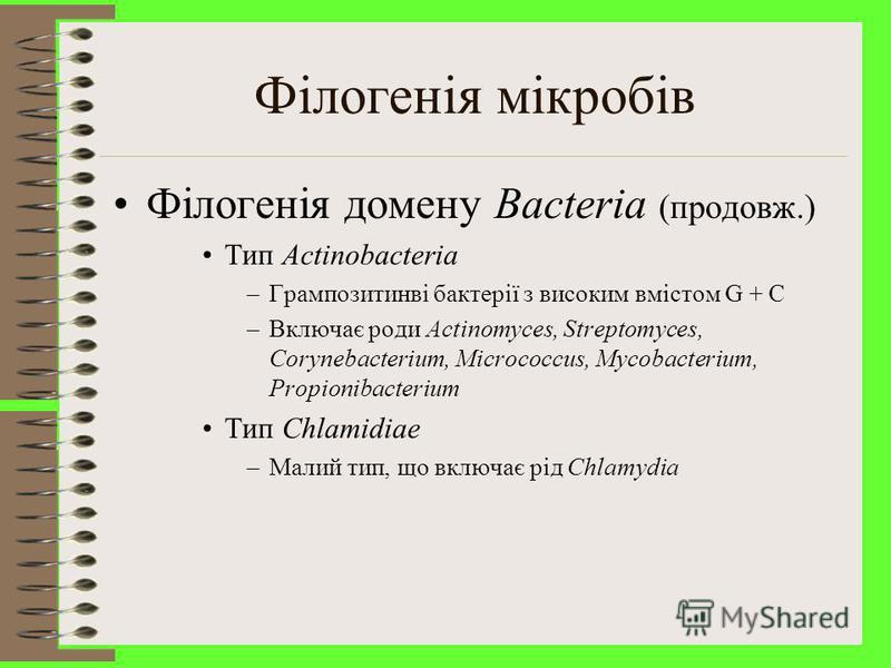 Філогенія мікробів Філогенія домену Bacteria (продовж.) Тип Firmicutes –Грампозитивні бактерії з низьким вмістом G + C –Поділено на 3 класи »Клас I – Clostridia; включає роди Clostridium, Desulfotomaculatum та ін. »Клас II – Mollicutes; бактерії, що
