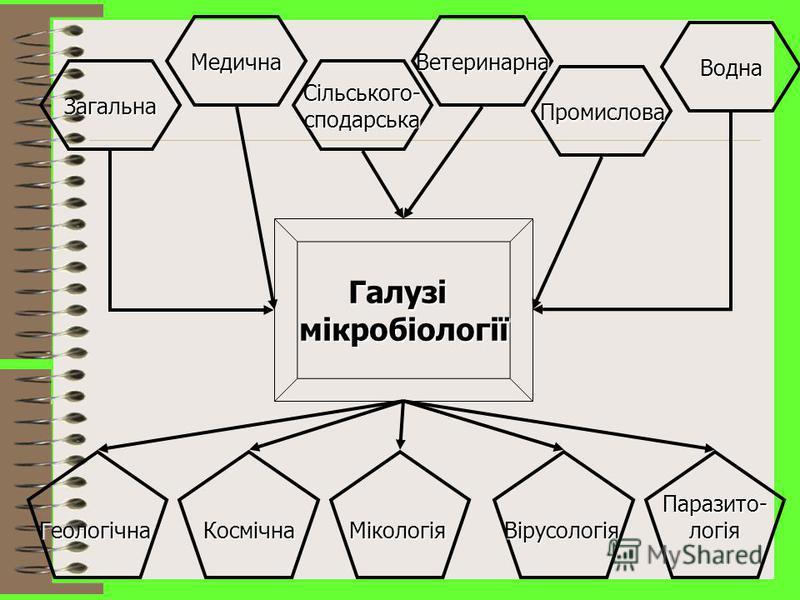 Специфічні групи мікроорганізмів Водорості Найпростіші Гриби (дріжджоподібні та плісень) Бактерії Рикетсії Віруси Пріони