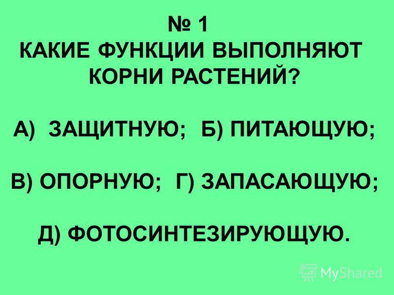 1 КАКИЕ ФУНКЦИИ ВЫПОЛНЯЮТ КОРНИ РАСТЕНИЙ? А) ЗАЩИТНУЮ; Б) ПИТАЮЩУЮ; В) ОПОРНУЮ; Г) ЗАПАСАЮЩУЮ; Д) ФОТОСИНТЕЗИРУЮЩУЮ.