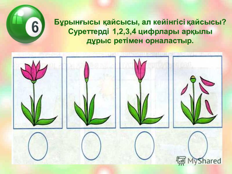Бұрынғысы қайсысы, ал кейінгісі қайсысы? Суреттерді 1,2,3,4 цифрлары арқылы дұрыс ретімен орналастыр.