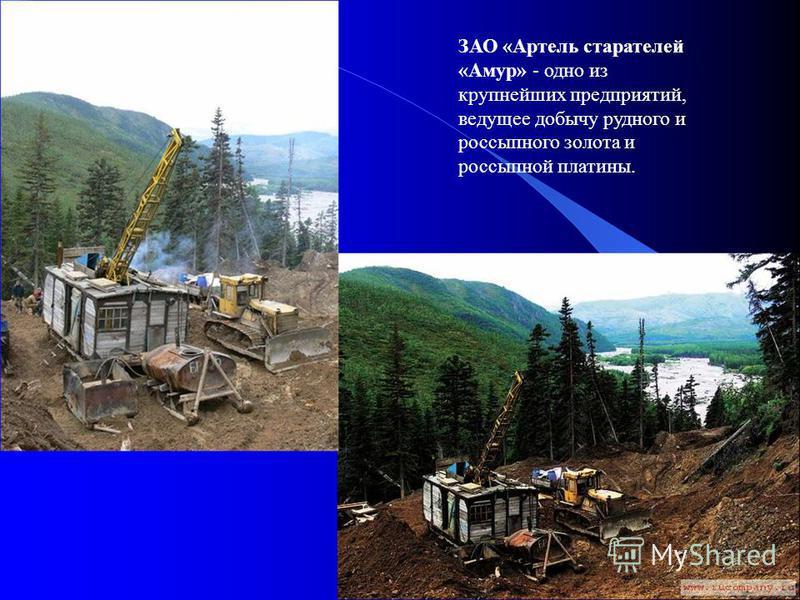 ЗАО «Артель старателей «Амур» - одно из крупнейших предприятий, ведущее добычу рудного и россыпного золота и россыпной платины.