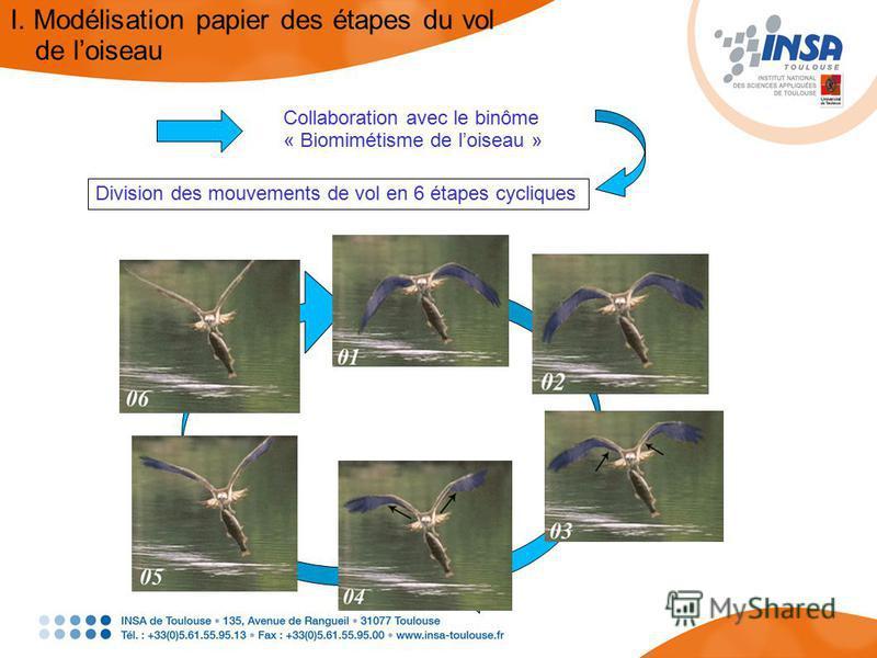 Collaboration avec le binôme « Biomimétisme de loiseau » Division des mouvements de vol en 6 étapes cycliques I. Modélisation papier des étapes du vol de loiseau