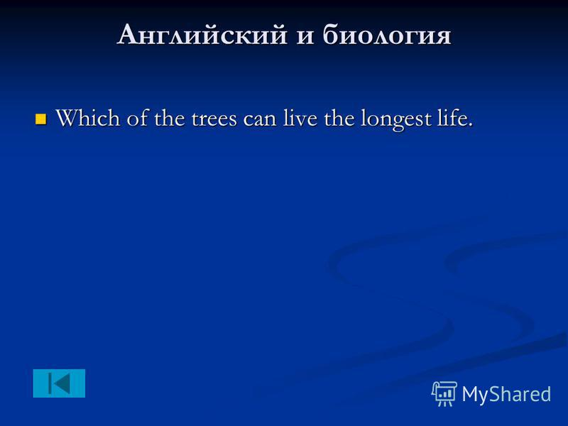 Английский и биология Which of the trees can live the longest life. Which of the trees can live the longest life.