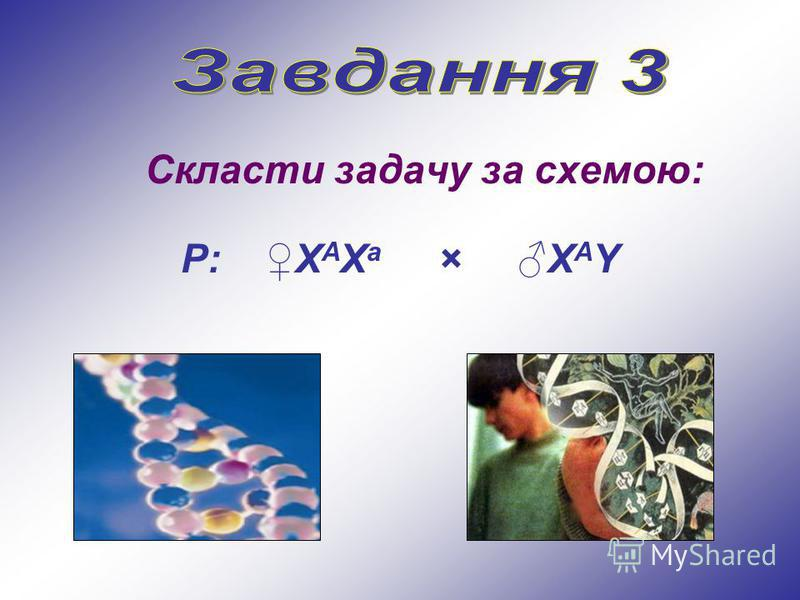 Скласти задачу за схемою: Р: Х А Х а × Х А Y