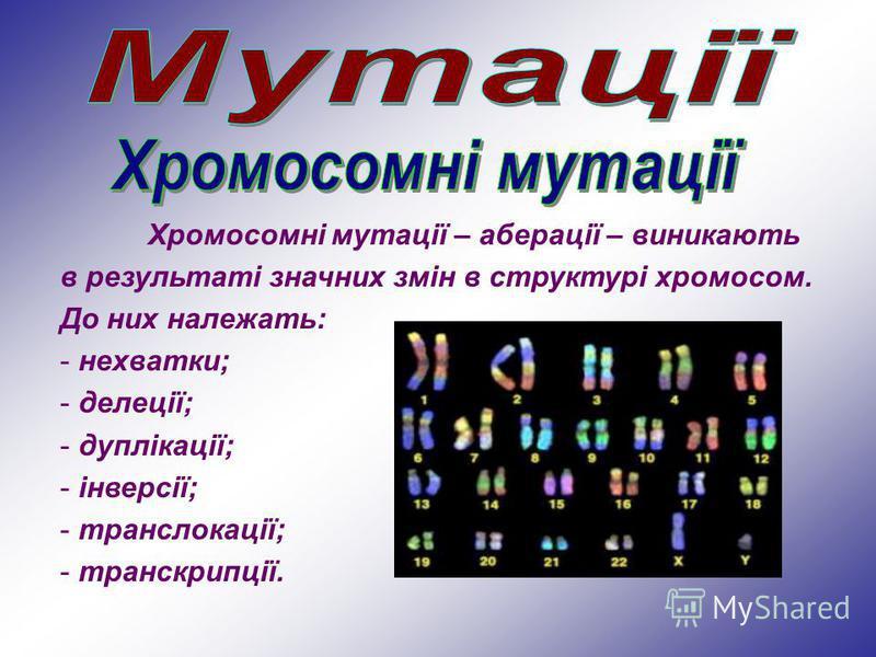 Хромосомні мутації – аберації – виникають в результаті значних змін в структурі хромосом. До них належать: - нехватки; - делеції; - дуплікації; - інверсії; - транслокації; - транскрипції.