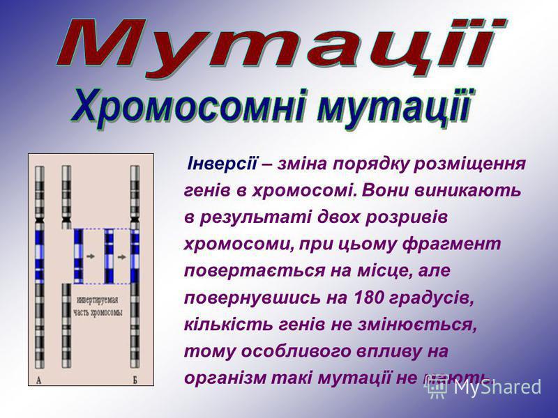 Інверсії – зміна порядку розміщення генів в хромосомі. Вони виникають в результаті двох розривів хромосоми, при цьому фрагмент повертається на місце, але повернувшись на 180 градусів, кількість генів не змінюється, тому особливого впливу на організм