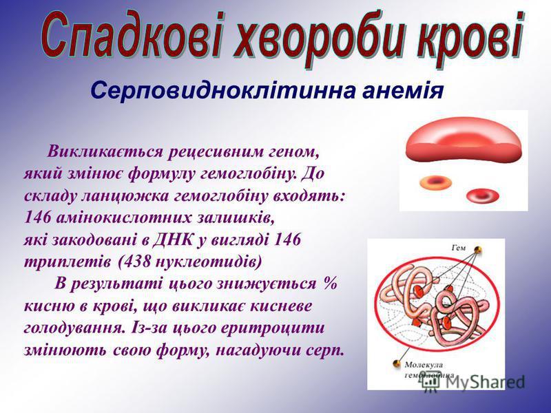 Серповидноклітинна анемія Викликається рецесивним геном, який змінює формулу гемоглобіну. До складу ланцюжка гемоглобіну входять: 146 амінокислотних залишків, які закодовані в ДНК у вигляді 146 триплетів (438 нуклеотидів) В результаті цього знижуєтьс