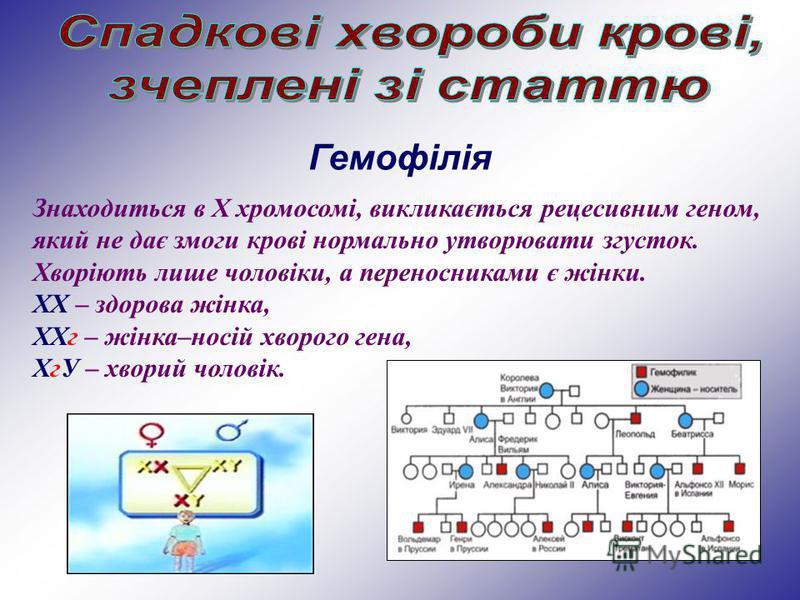 Знаходиться в Х хромосомі, викликається рецесивним геном, який не дає змоги крові нормально утворювати згусток. Хворіють лише чоловіки, а переносниками є жінки. ХХ – здорова жінка, ХХг – жінка–носій хворого гена, ХгУ – хворий чоловік. Гемофілія