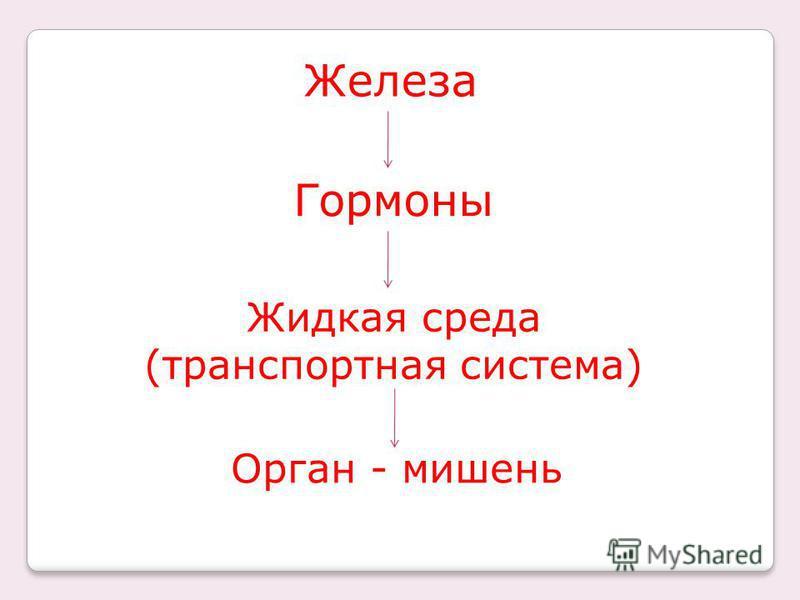 Железа Жидкая среда (транспортная система) Гормоны Орган - мишень