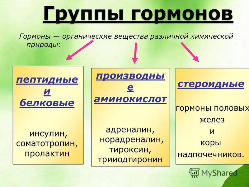 Группы гормонов Гормоны органические вещества различной химической природы: пептидные и белковые инсулин, соматотропин, пролактин производны е аминокислот адреналин, норадреналин, тироксин, трийодтиронин стероидные гормоны половых желез и коры надпоч