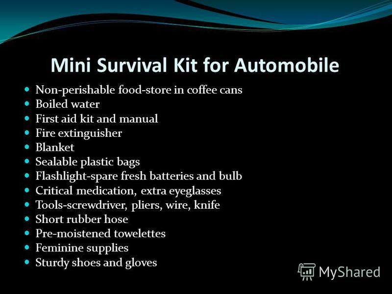 Flashlight-spare batteries and bulbs Watch or clock-battery or spring wound. COOKING: Barbeque-use outdoors ONLY-charcoal and lighter, or Sterno stove Plastic bags-various sizes, sealable Pots-at least two Paper plates, plastic utensils, and paper to