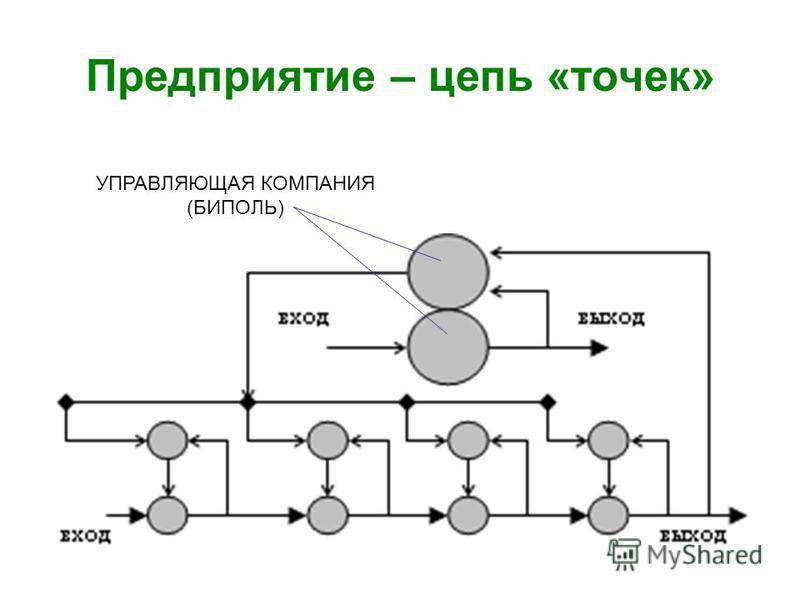 Предприятие – цепь «точек» УПРАВЛЯЮЩАЯ КОМПАНИЯ (БИПОЛЬ)