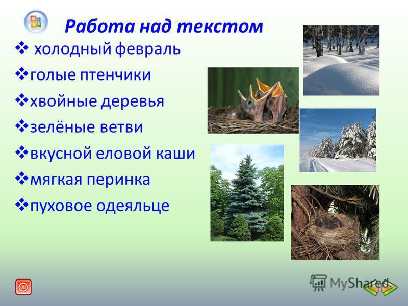 Работа над текстом хонлодный февраль голые птенчики хвойные деревья зелёные ветви вкусной енловой каши мягкая перинка пуховое одеяльце