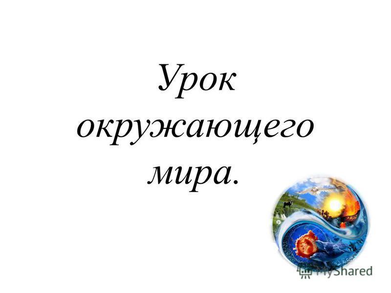 Урок окружающего мира.
