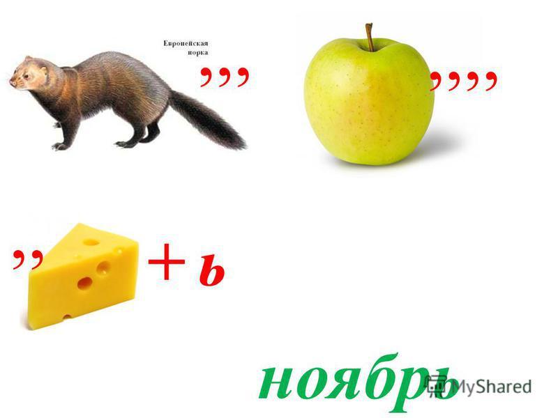 ,,,,,,,,, + ь ноябрь