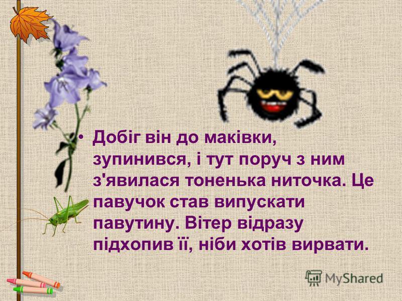 Добіг він до маківки, зупинився, і тут поруч з ним з'явилася тоненька ниточка. Це павучок став випускати павутину. Вітер відразу підхопив її, ніби хотів вирвати.