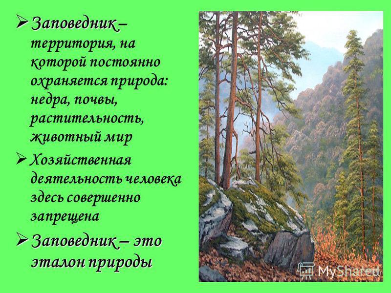 Любить природу – это значит любить Родину Любить природу – это значит любить Родину М.Пришвин