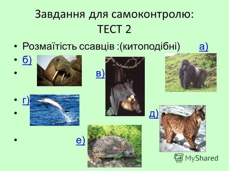 Завдання для самоконтролю: ТЕСТ 2 Розмаїтість ссавців :(китоподібні) а)а) б) в) г) д) е)