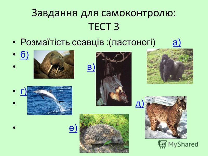 Завдання для самоконтролю: ТЕСТ 3 Розмаїтість ссавців :(ластоногі) а)а) б) в) г) д) е)