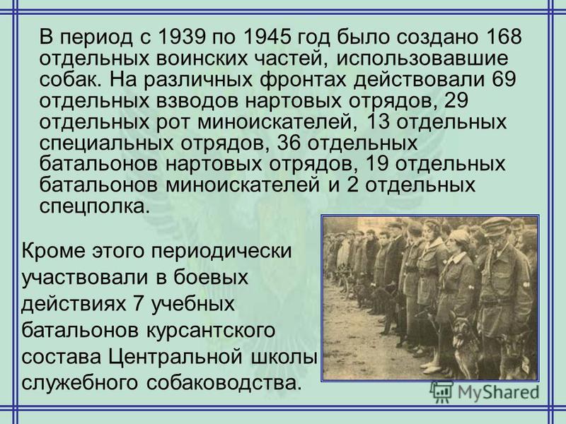 В период с 1939 по 1945 год было создано 168 отдельных воинских частей, использовавшие собак. На различных фронтах действовали 69 отдельных взводов нартовых отрядов, 29 отдельных рот миноискателей, 13 отдельных специальных отрядов, 36 отдельных батал