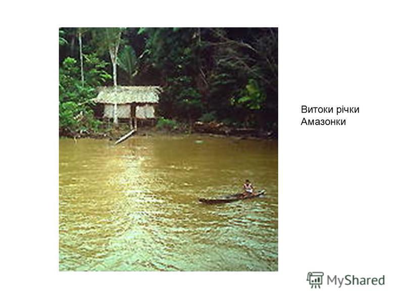 Витоки річки Амазонки