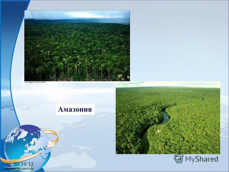 10.10.13 Амазония