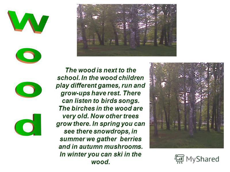 The wood is next to the school. In the wood children play different games, run and grow-ups have rest. There can listen to birds songs. The birches in the wood are very old. Now other trees grow there. In spring you can see there snowdrops, in summer
