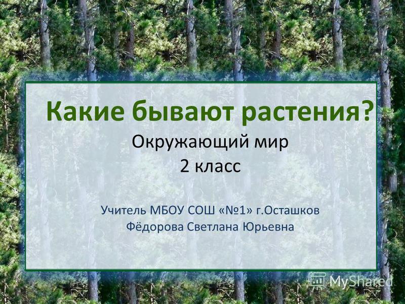 Какие бывают растения? Окружающий мир 2 класс Учитель МБОУ СОШ «1» г.Осташков Фёдорова Светлана Юрьевна