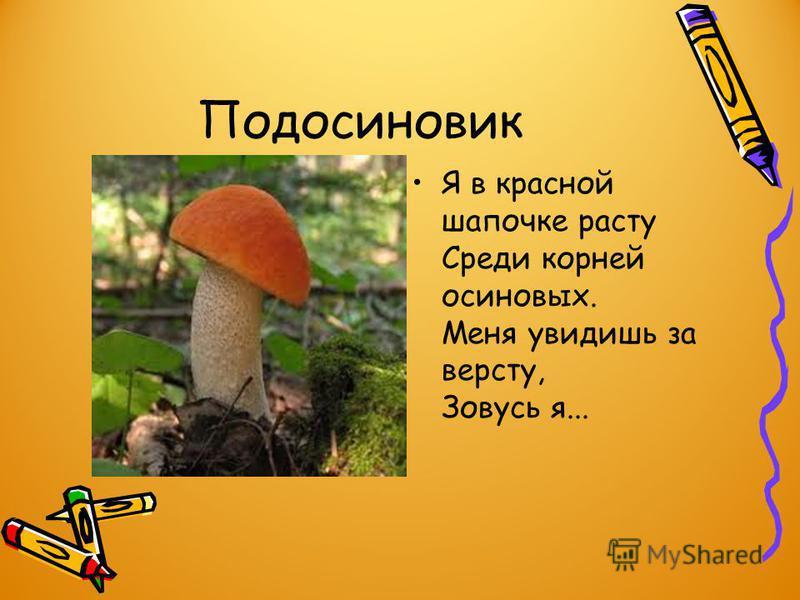 Вот о грибах я вам и расскажу. Они растут с лета до ранней осени. Для роста им необходимы тепло и влага. Посмотрите, какие есть грибы. Сейчас я загадаю про них загадки, а вы слушайте внимательно, чтоб их отгадать: Вдоль лесных дорожек Много белых нож