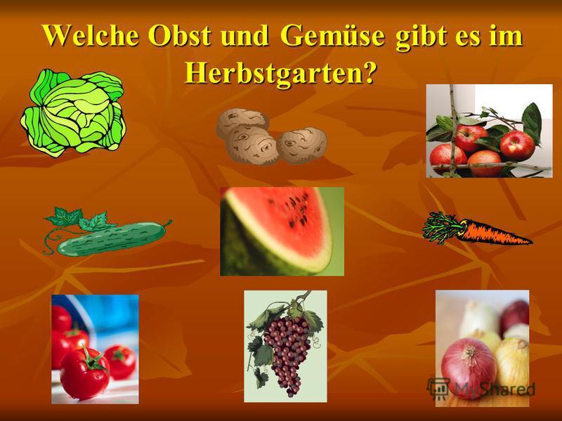 - Wir haben eine Obst- und Gemüsetabelle gemacht. - Wir haben eine Obst- und Gemüsetabelle gemacht. Wir haben kurze Erzählungen vorbereitet. Wir haben kurze Erzählungen vorbereitet. Wir spielen eine Szene Im Gemüseladen. Wir spielen eine Szene Im Gem