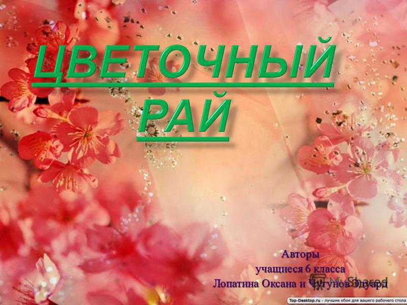 Авторы учащиеся 6 класса Лопатина Оксана и Чугунов Эдуард