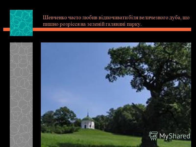 Шевченко часто любив відпочивати біля величезного дуба, що пишно розрісся на зеленій галявині парку.
