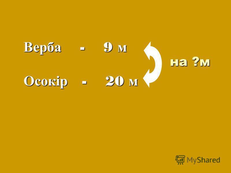 на ?м Верба - 9 м Осокір - 20 м