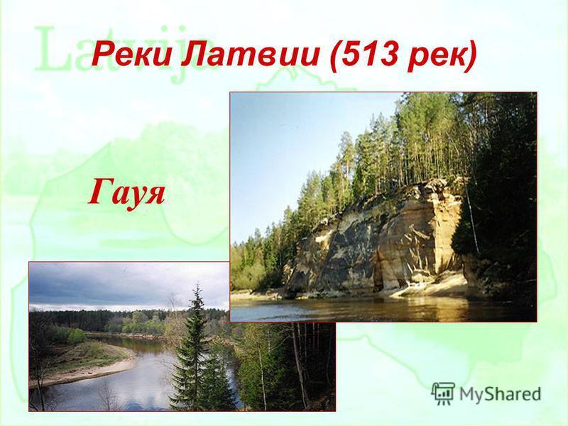 Реки Латвии (513 рек) Гауя