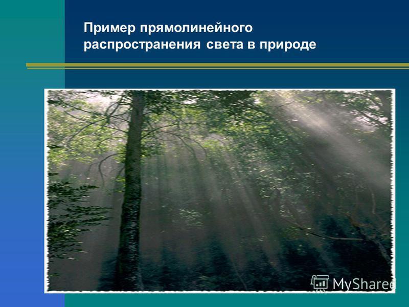 Пример прямолинейного распространения света в природе