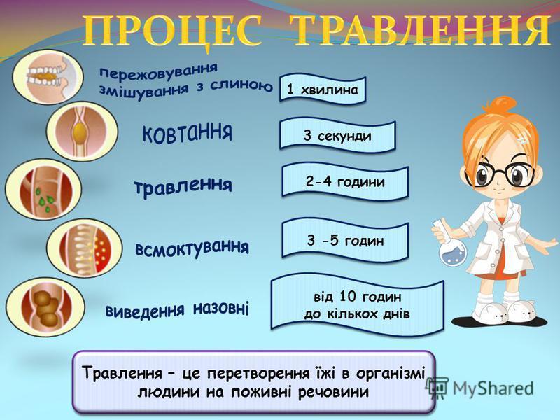 Травлення – це перетворення їжі в організмі людини на поживні речовини 1 хвилина 3 секунди 2-4 години 3 -5 годин від 10 годин до кількох днів від 10 годин до кількох днів
