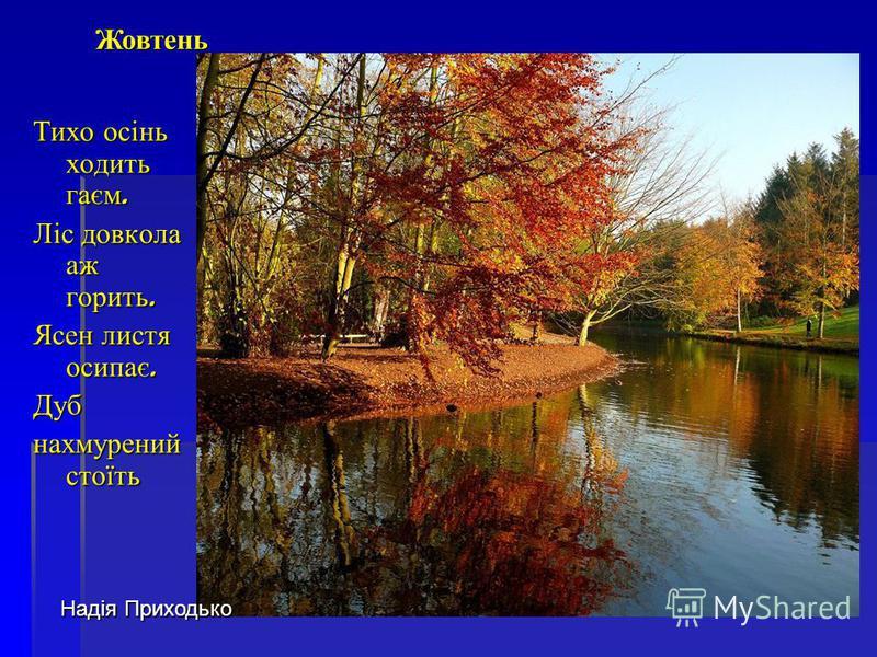 Тихо осінь ходить гаєм. Ліс довкола аж горить. Ясен листя осипає. Дуб нахмурений стоїть Надія Приходько Жовтень